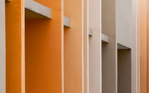 Colored Fins
